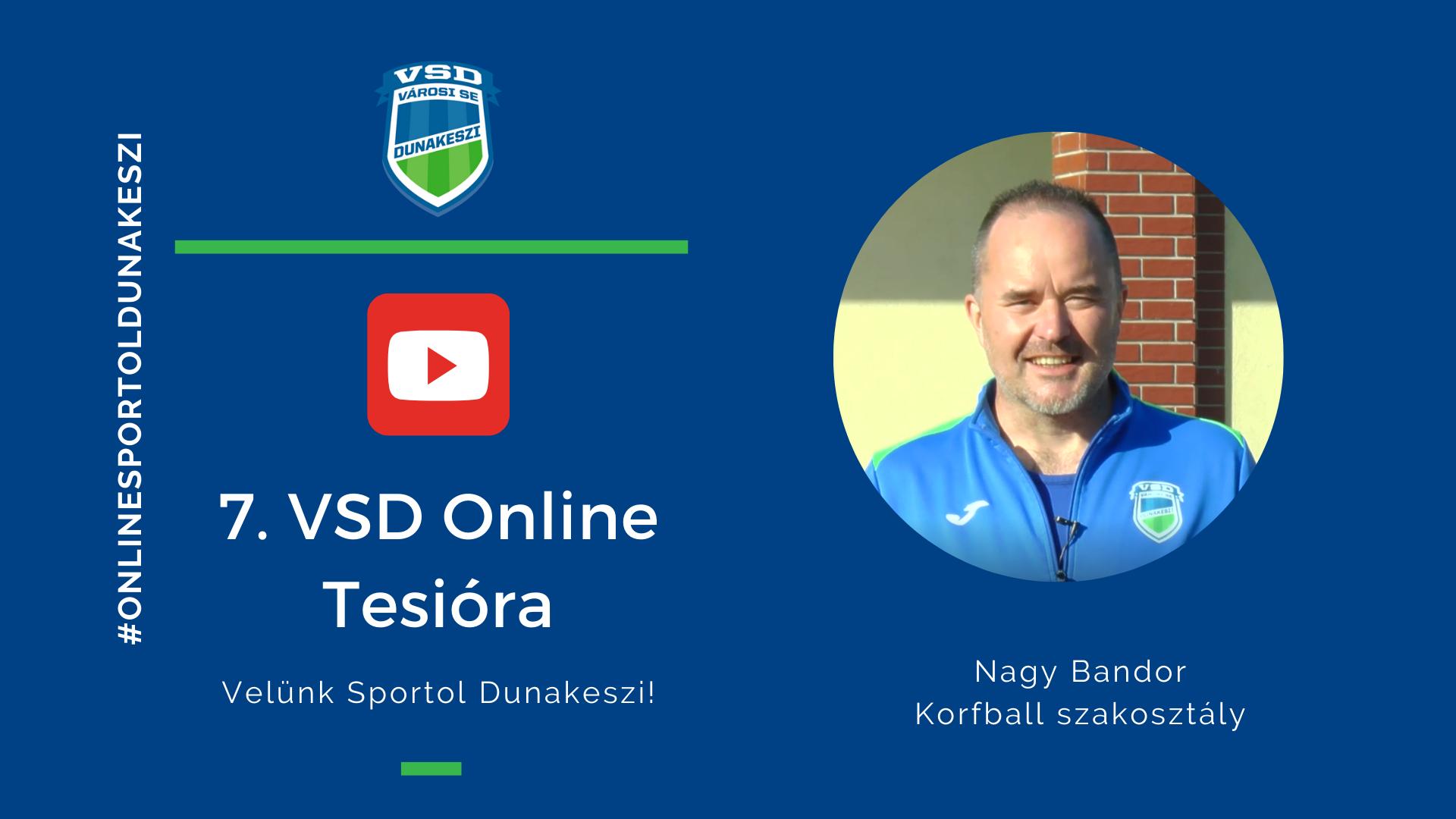 VSD korfball online tesi
